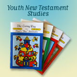 Youth New Testament Studies